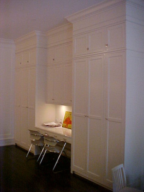 Another Single Family House on Kenmore, Family Room Cabinetry